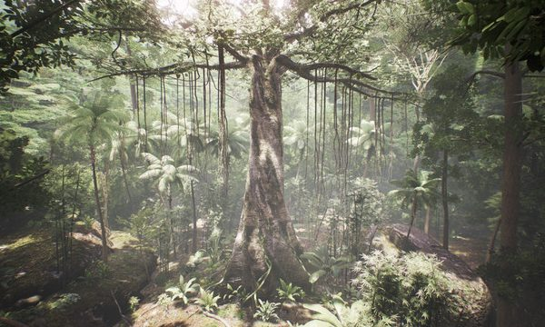 Tree VR Exhibition